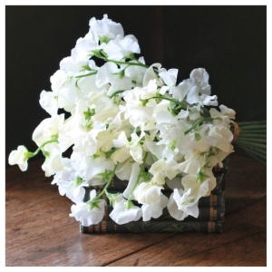 The Real Flower Company Ivory and Cream English Sweet Peas