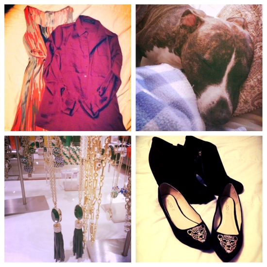Clockwise from top left: A patterned dress a friend passed along to me and a silky new shirt; my sleepy Paul curled up for a Sunday afternoon nap; black and gold shoes that are perfect for fall;  and a bevy of jewels I'd love to make my own.